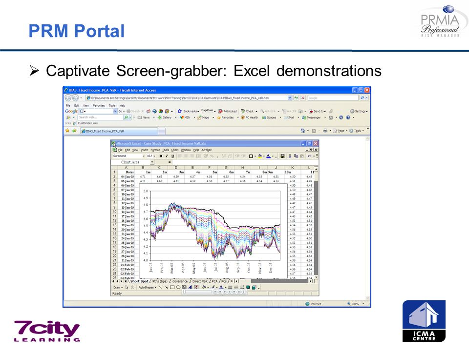 PRM Portal Captivate Screen-grabber: Excel demonstrations