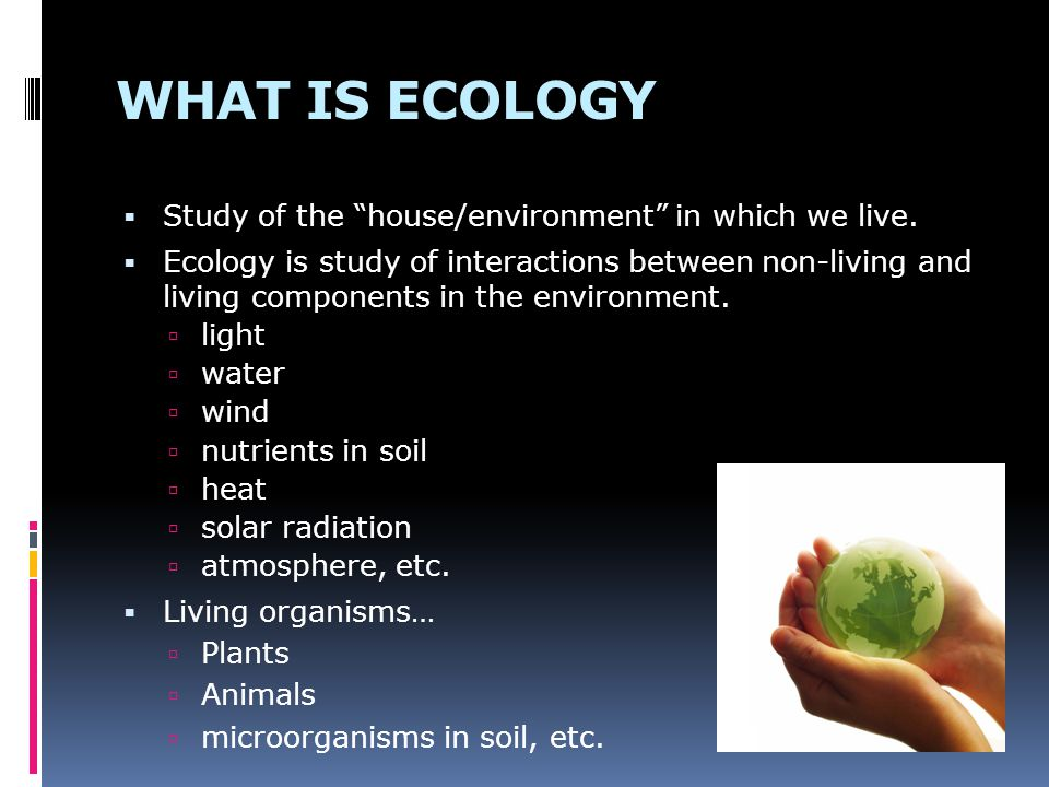 WHAT IS ECOLOGY Study of the house/environment in which we live.