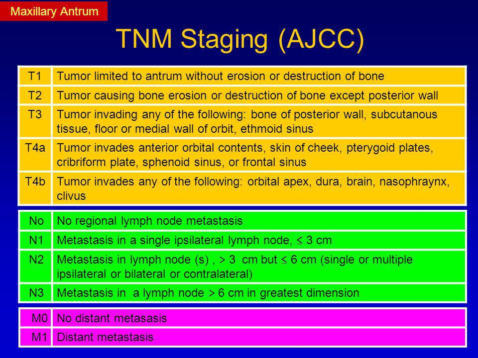 TNM Staging (AJCC) Maxillary Antrum