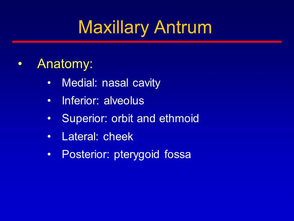 Maxillary Antrum Anatomy: Medial: nasal cavity Inferior: alveolus