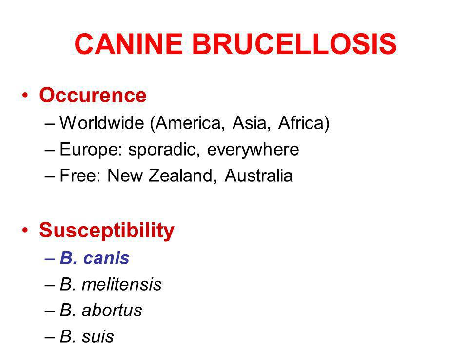 CANINE BRUCELLOSIS Occurence Susceptibility