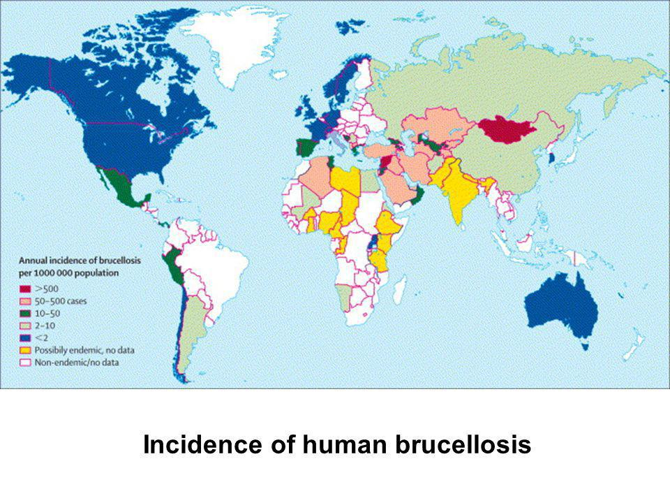 Incidence of human brucellosis