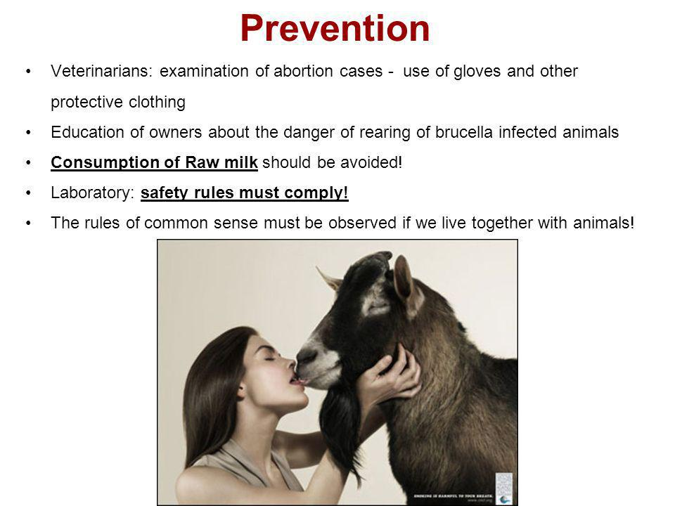 Prevention Veterinarians: examination of abortion cases - use of gloves and other protective clothing.