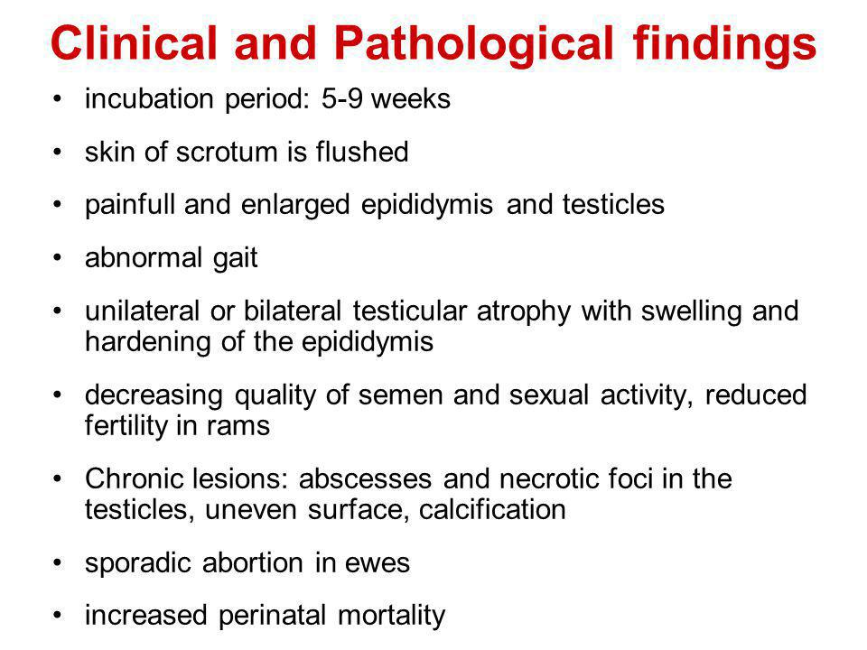 Clinical and Pathological findings