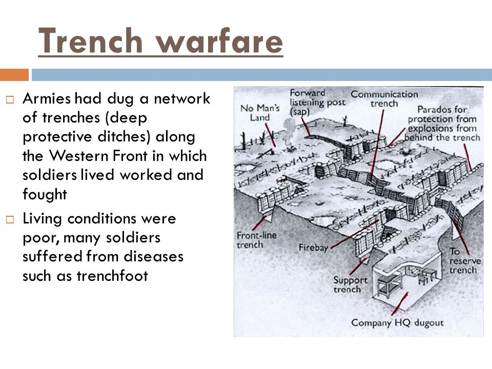 Trench warfareArmies had dug a network of trenches (deep protective ditches) along the Western Front in which soldiers lived worked and fought.