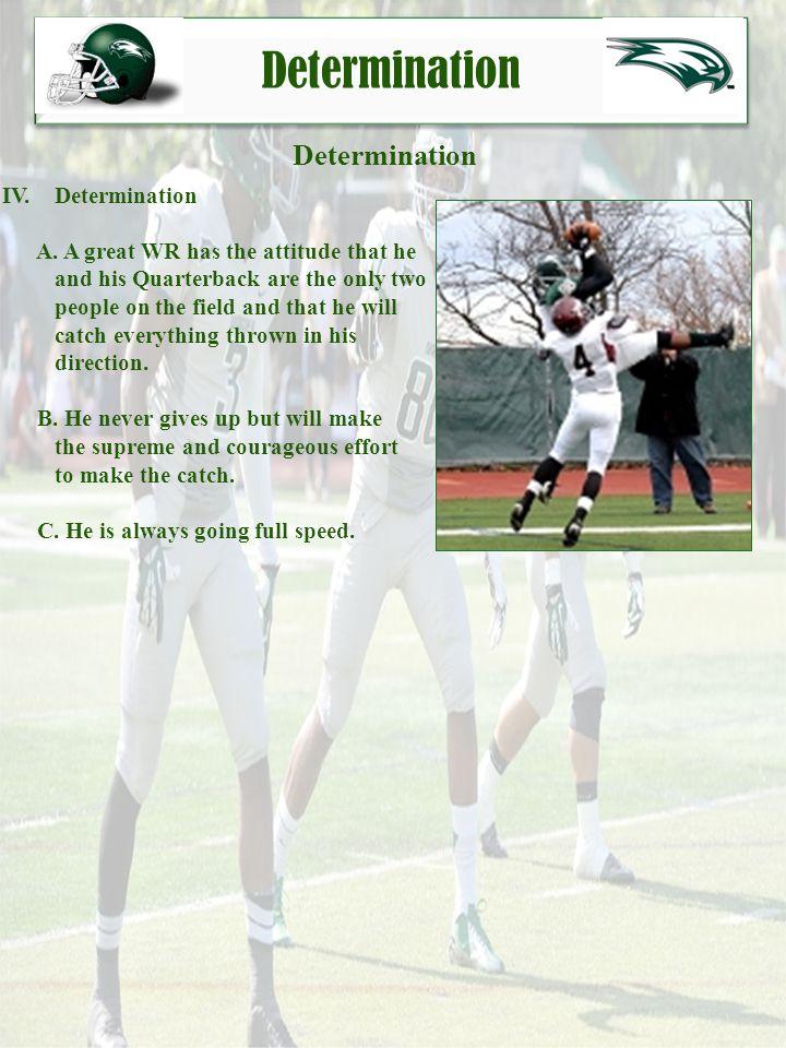 Determination Determination IV. Determination