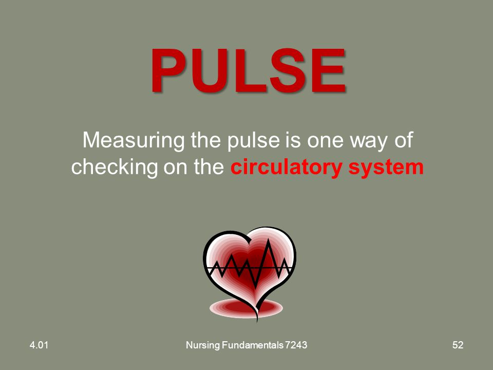 Measuring the pulse is one way of checking on the circulatory system