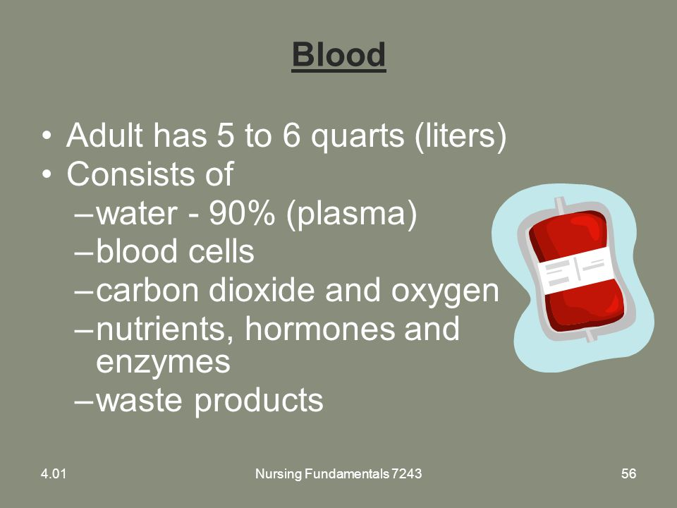 Adult has 5 to 6 quarts (liters) Consists of water - 90% (plasma)