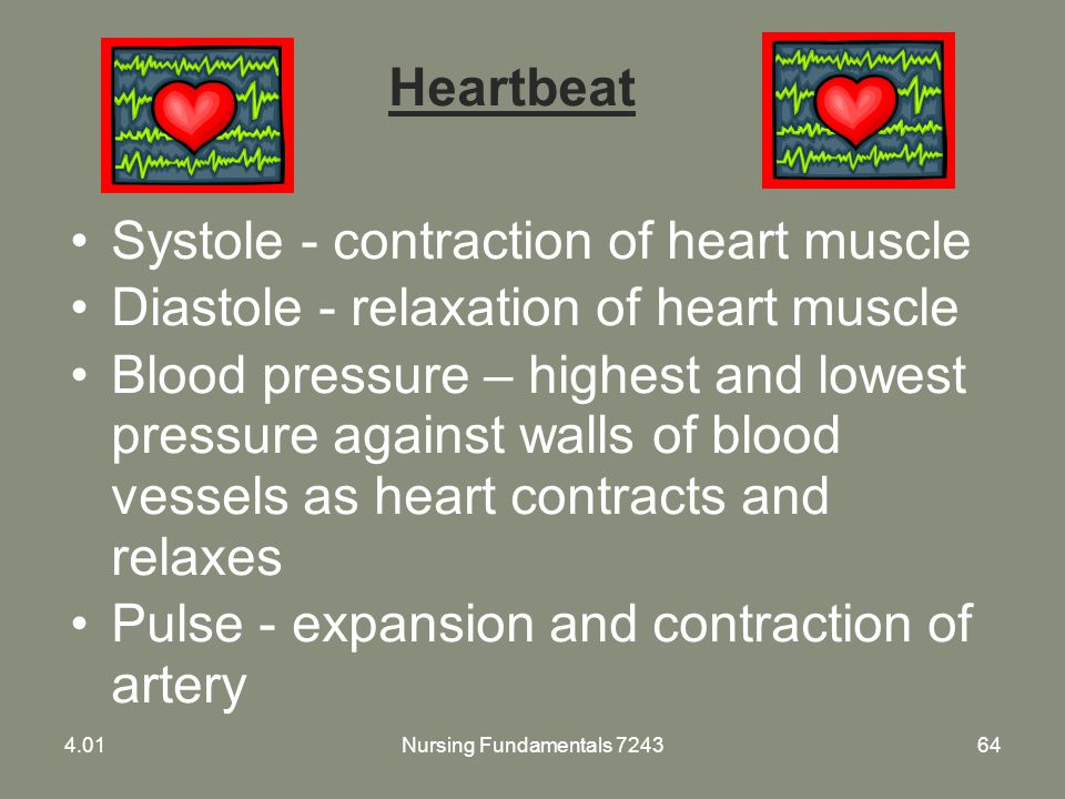 Systole - contraction of heart muscle