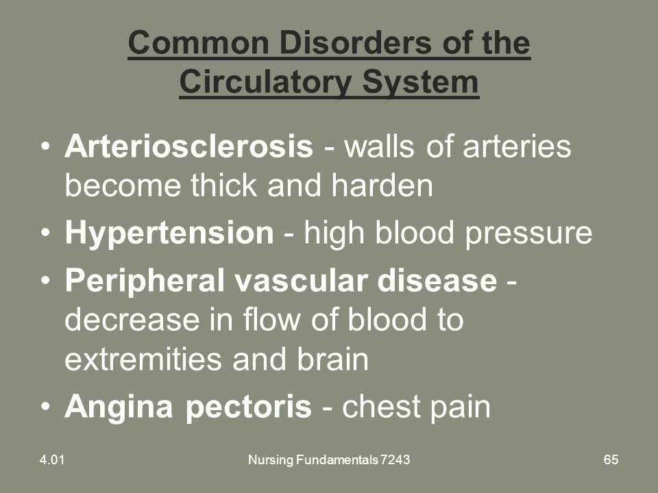 Common Disorders of the Circulatory System