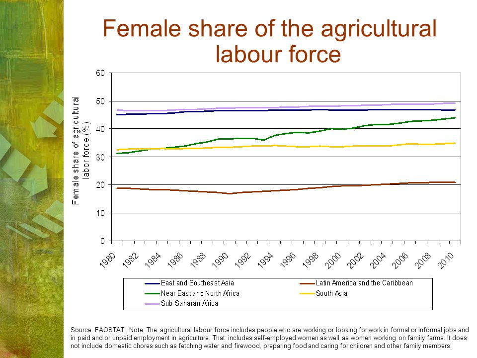 Female share of the agricultural labour force