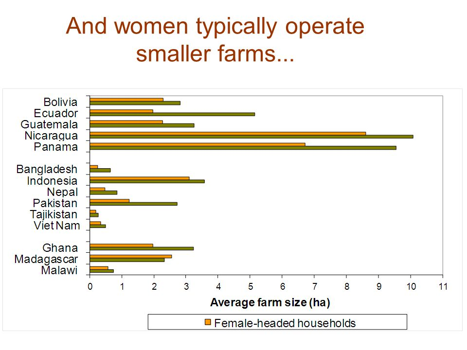 And women typically operate smaller farms...