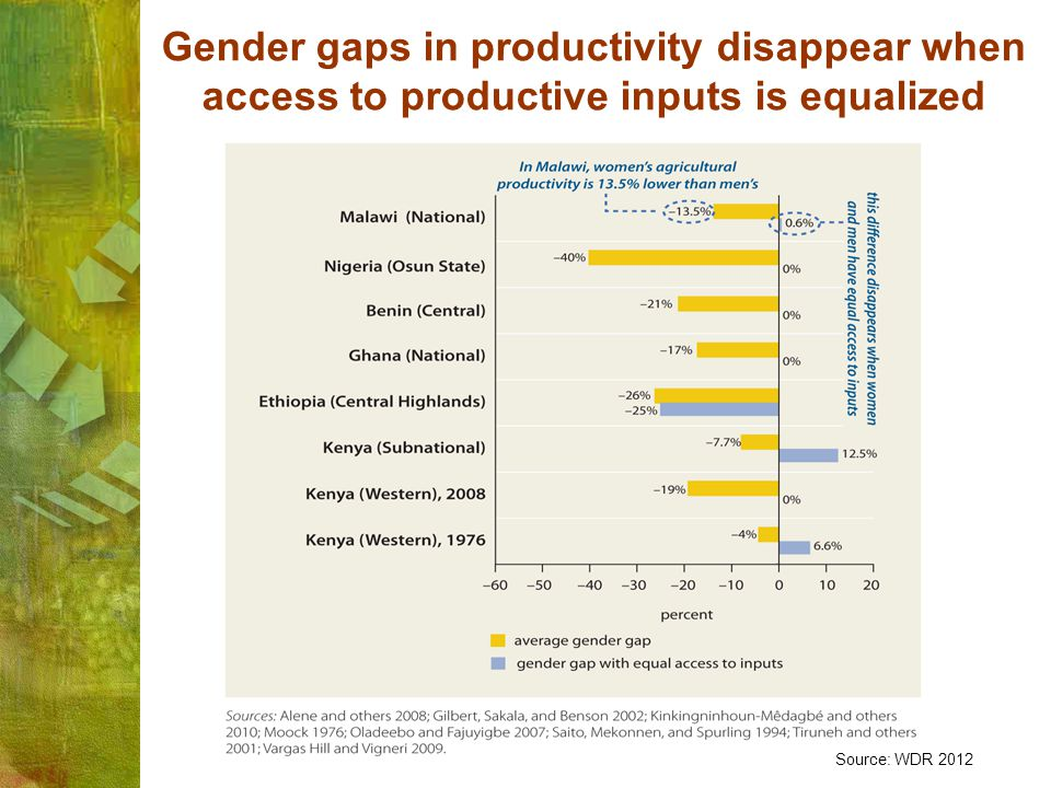Gender gaps in productivity disappear when access to productive inputs is equalized