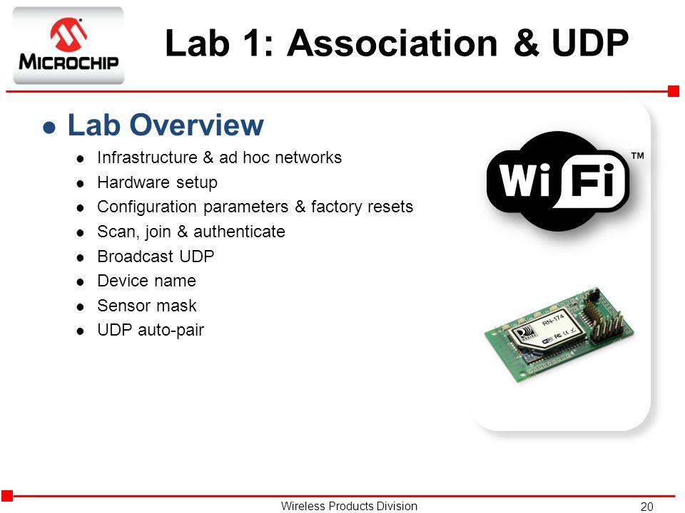 Lab 1: Association & UDP Lab Overview Infrastructure & ad hoc networks