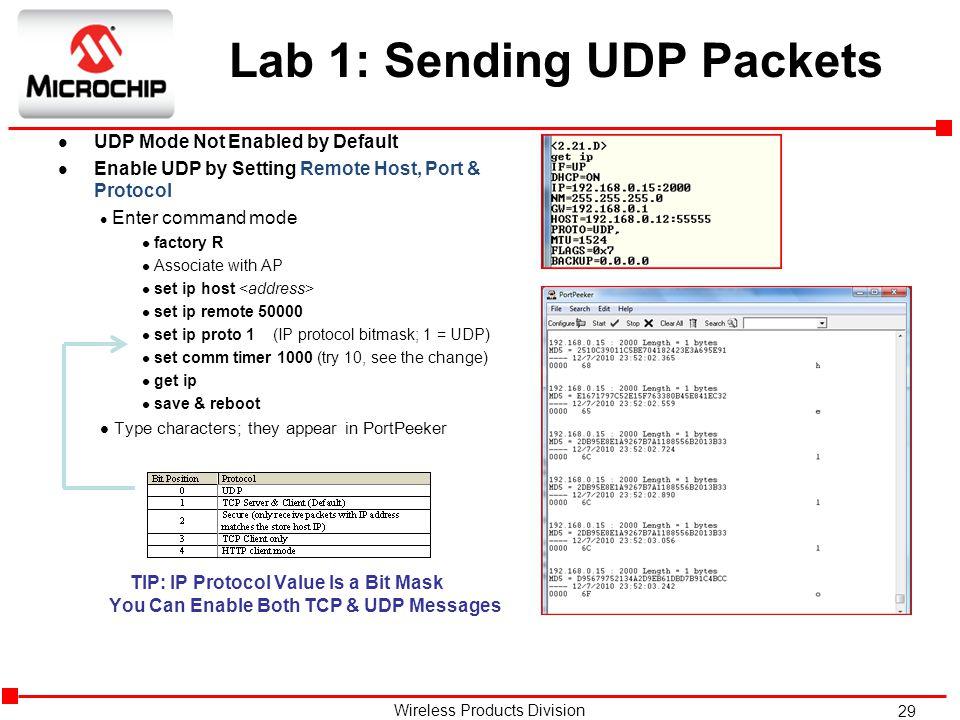 Lab 1: Sending UDP Packets
