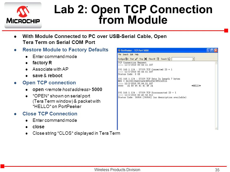 Lab 2: Open TCP Connection from Module
