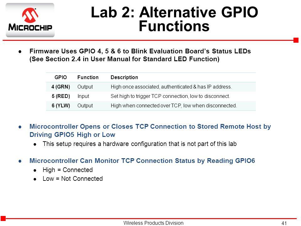 Lab 2: Alternative GPIO Functions