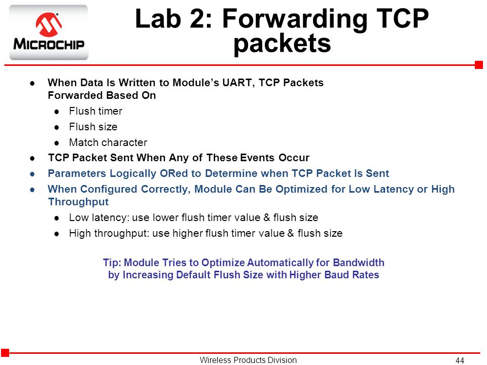Lab 2: Forwarding TCP packets
