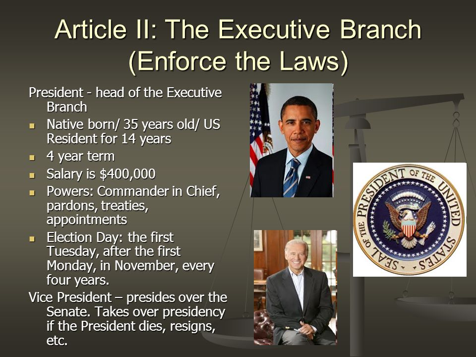 Article II: The Executive Branch (Enforce the Laws)