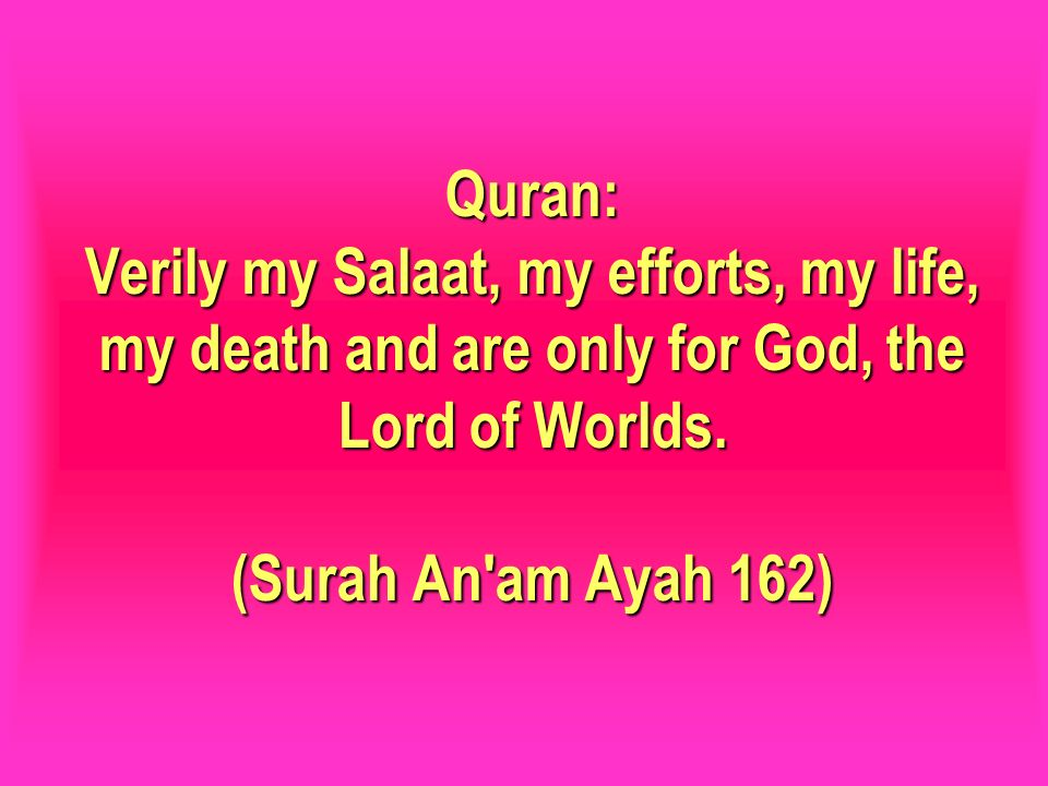 Quran: Verily my Salaat, my efforts, my life, my death and are only for God, the Lord of Worlds.