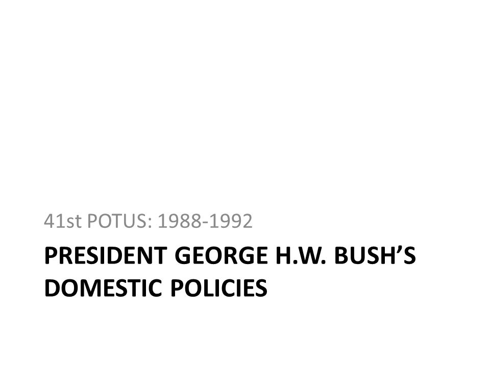President GEORGE H.W. BUSH's DOMESTIC policies