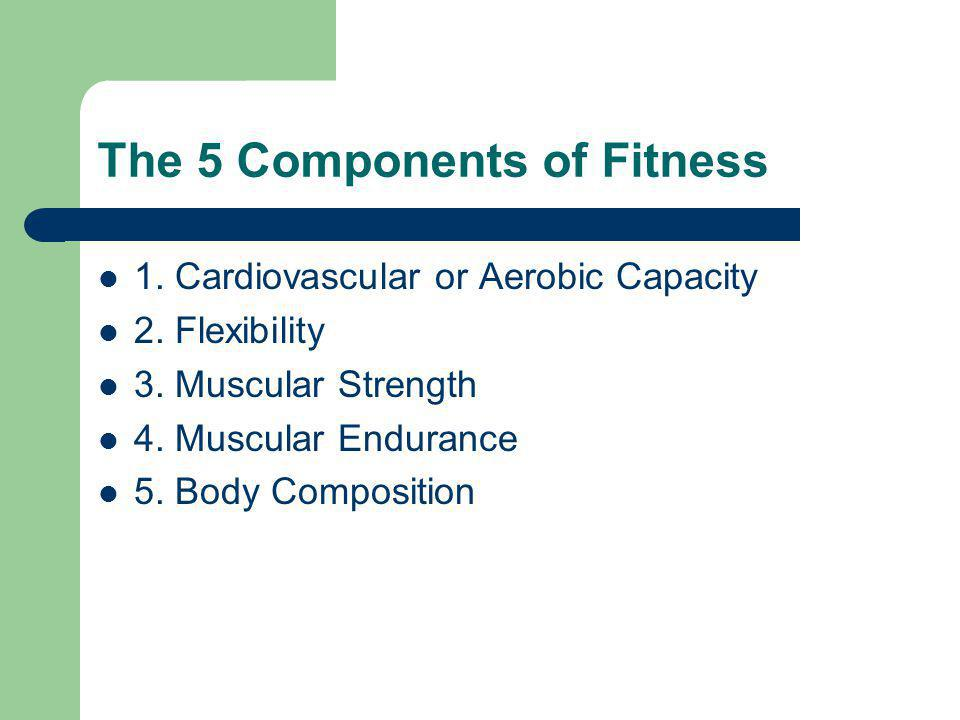 The 5 Components of Fitness