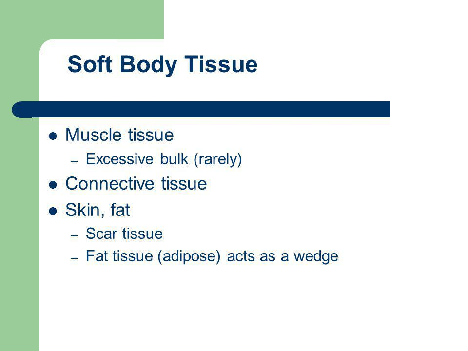 Soft Body Tissue Muscle tissue Connective tissue Skin, fat