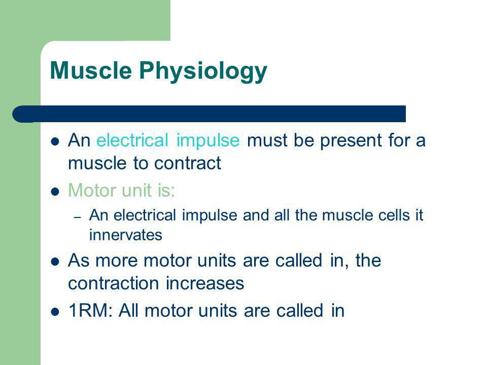 Muscle Physiology An electrical impulse must be present for a muscle to contract. Motor unit is: