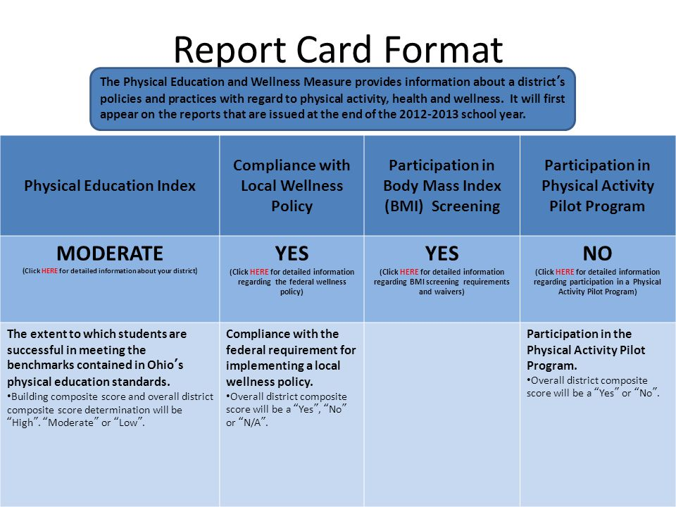 Report Card Format MODERATE YES NO Physical Education Index