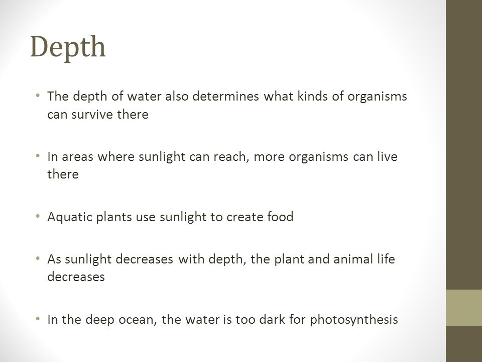 Depth The depth of water also determines what kinds of organisms can survive there. In areas where sunlight can reach, more organisms can live there.