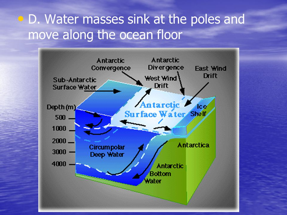 D. Water masses sink at the poles and move along the ocean floor