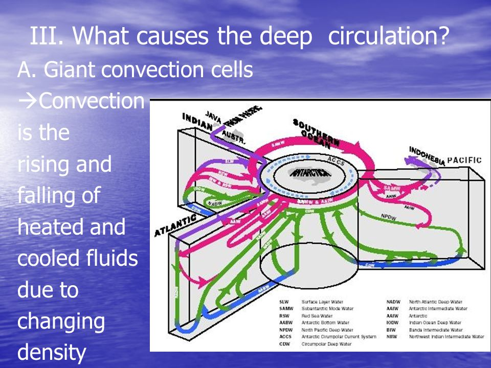 III. What causes the deep circulation