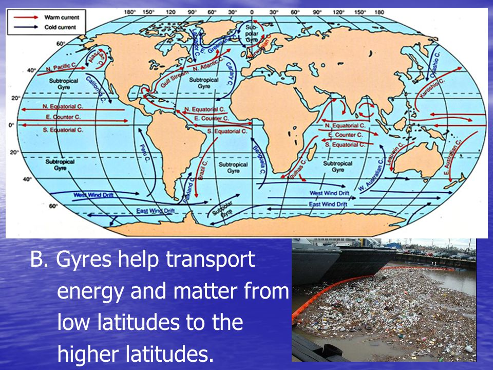 B. Gyres help transport energy and matter from low latitudes to the higher latitudes.