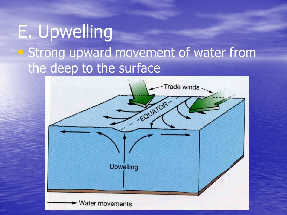 E. Upwelling Strong upward movement of water from the deep to the surface