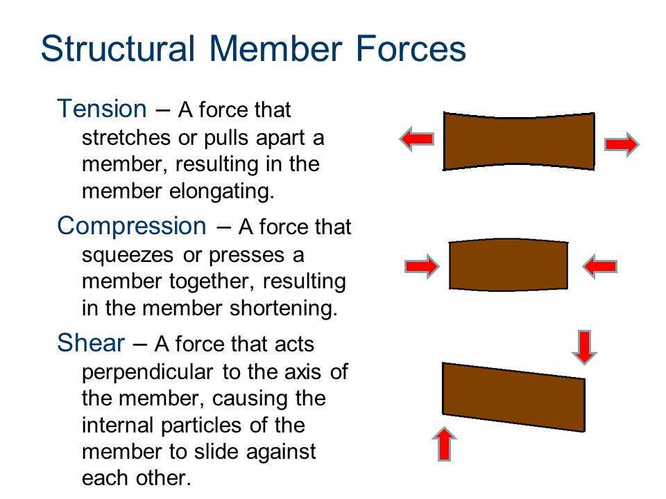 Structural Member Forces