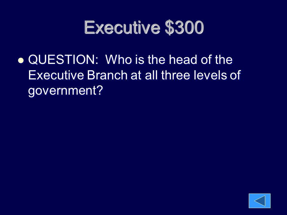 Executive $300 QUESTION: Who is the head of the Executive Branch at all three levels of government