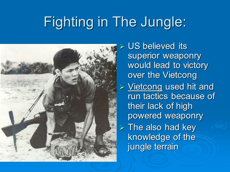 Fighting in The Jungle: