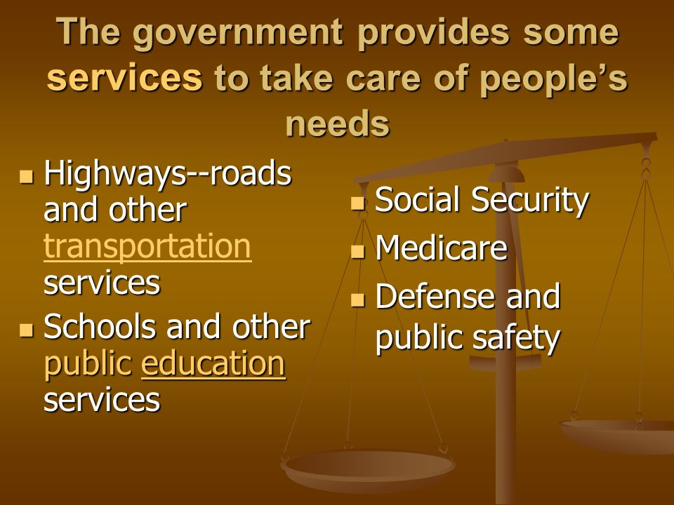 The government provides some services to take care of people's needs