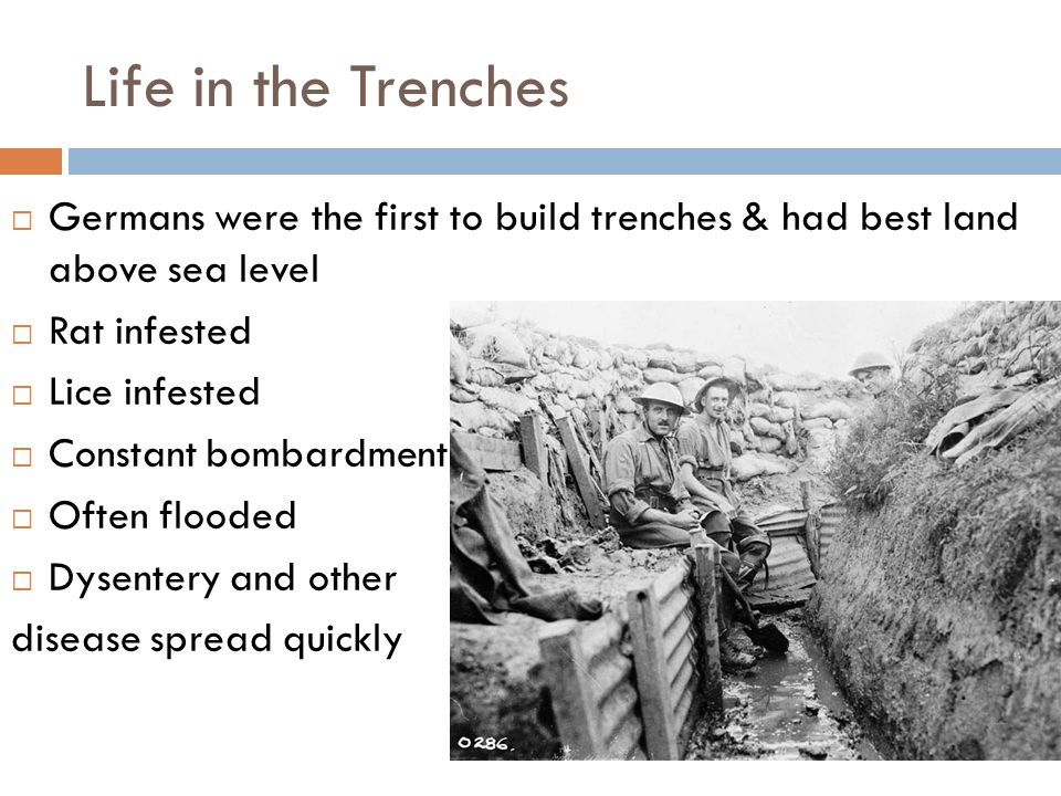 Life in the Trenches Germans were the first to build trenches & had best land above sea level. Rat infested.