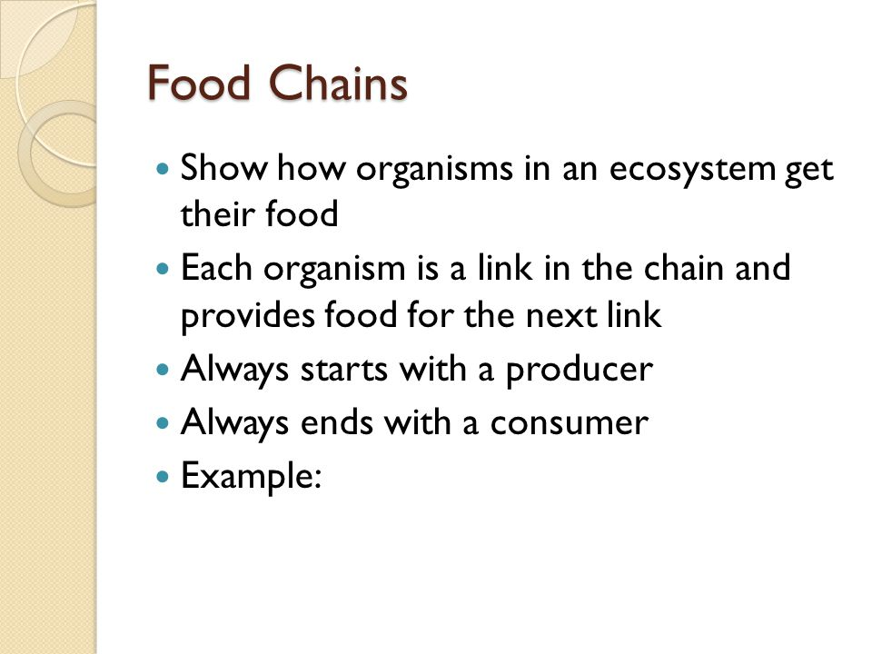 Food Chains Show how organisms in an ecosystem get their food