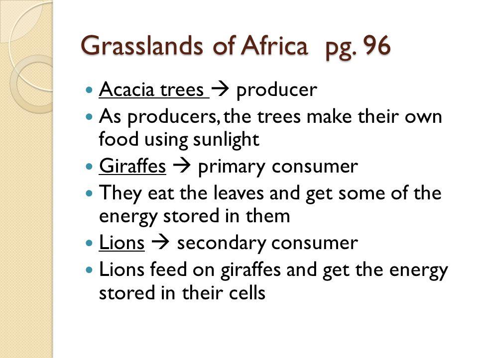 Grasslands of Africa pg. 96