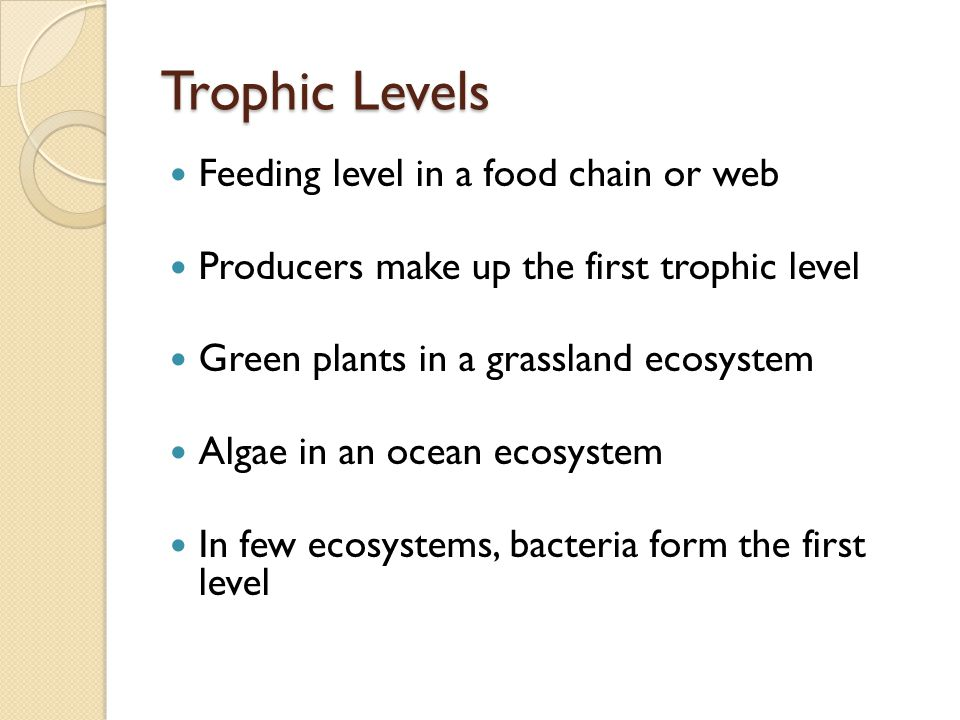 Trophic Levels Feeding level in a food chain or web