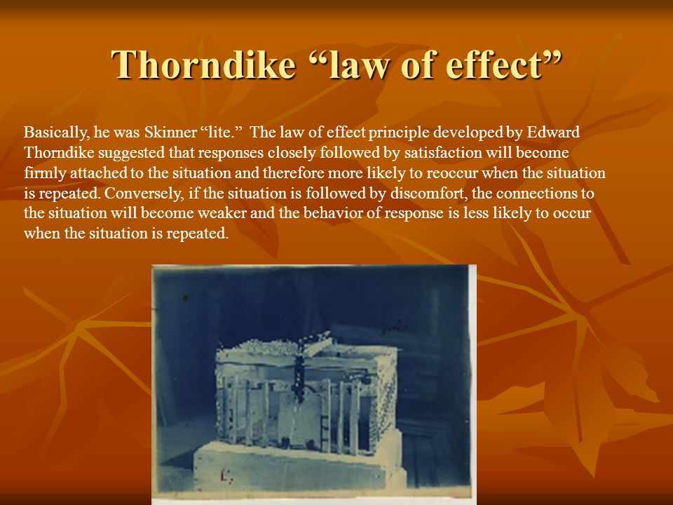 Thorndike law of effect