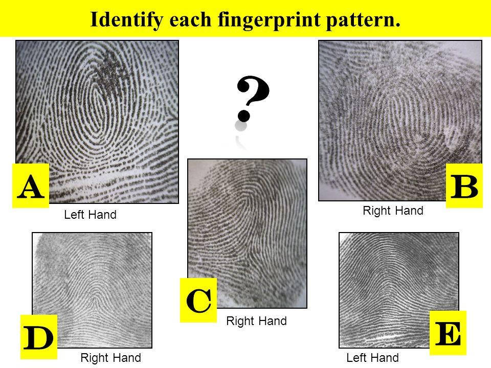 Identify each fingerprint pattern.