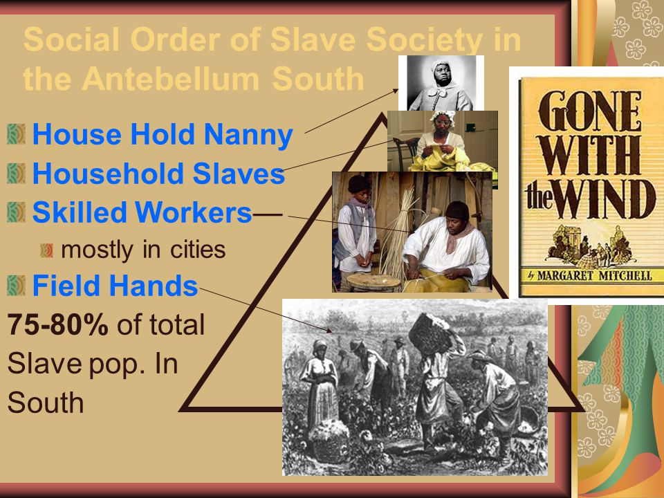 Social Order of Slave Society in the Antebellum South