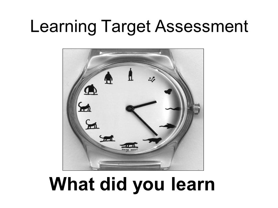 Learning Target Assessment