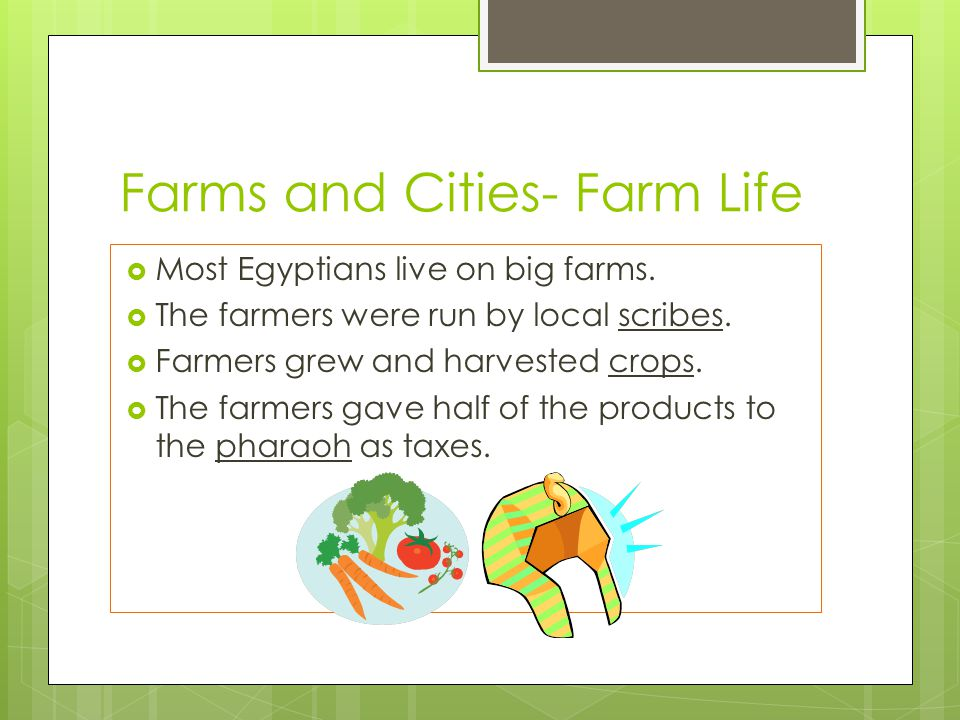 Farms and Cities- Farm Life