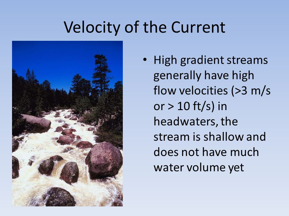 Velocity of the Current