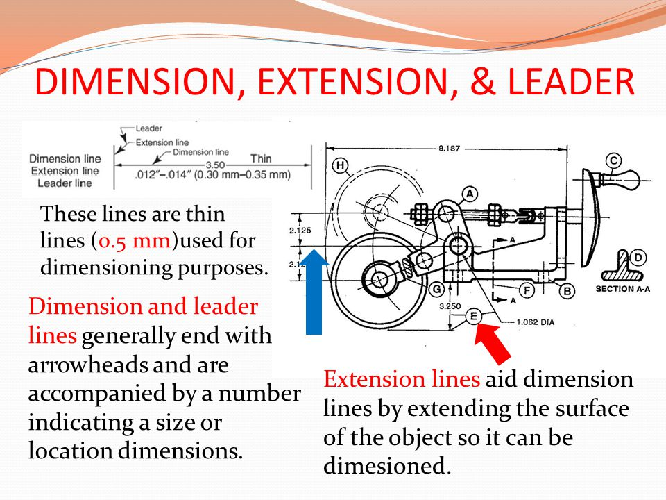 DIMENSION, EXTENSION, & LEADER