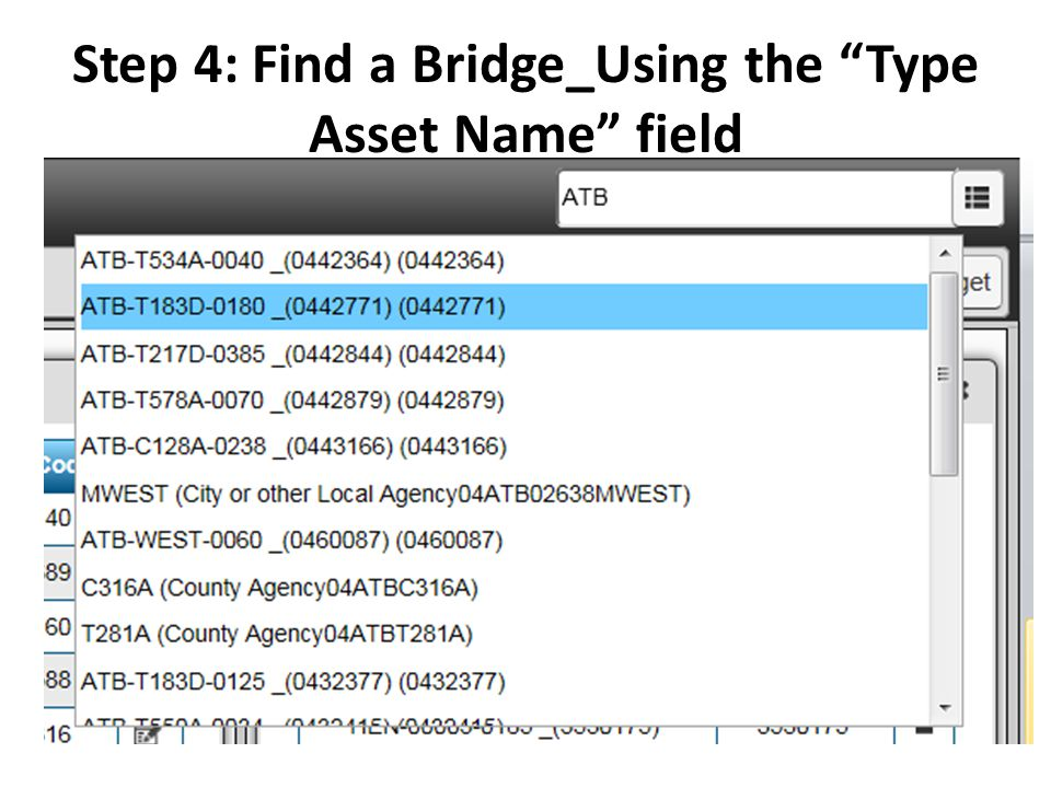 Step 4: Find a Bridge_Using the Type Asset Name field
